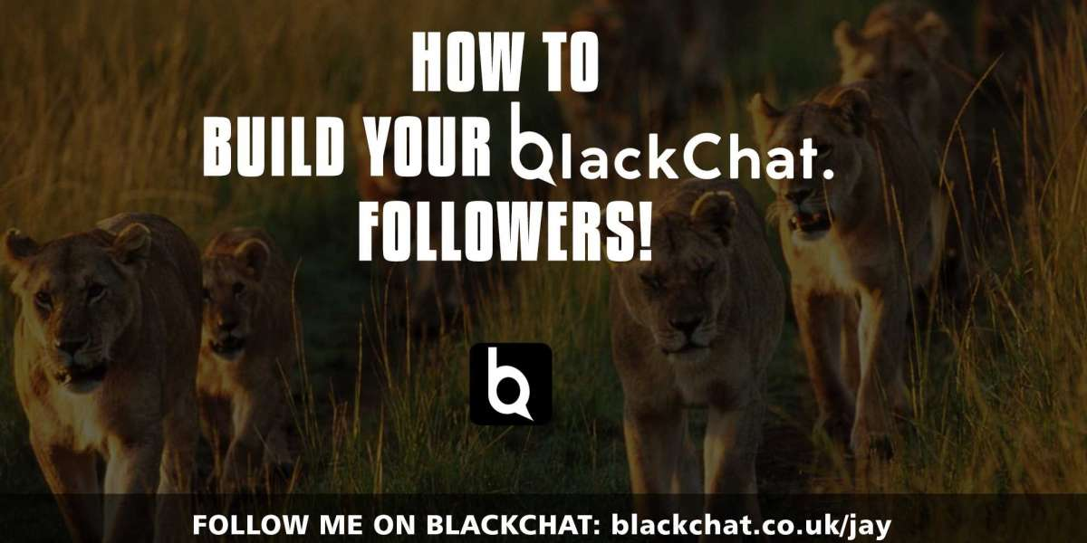 How to Build your Blackchat Followers